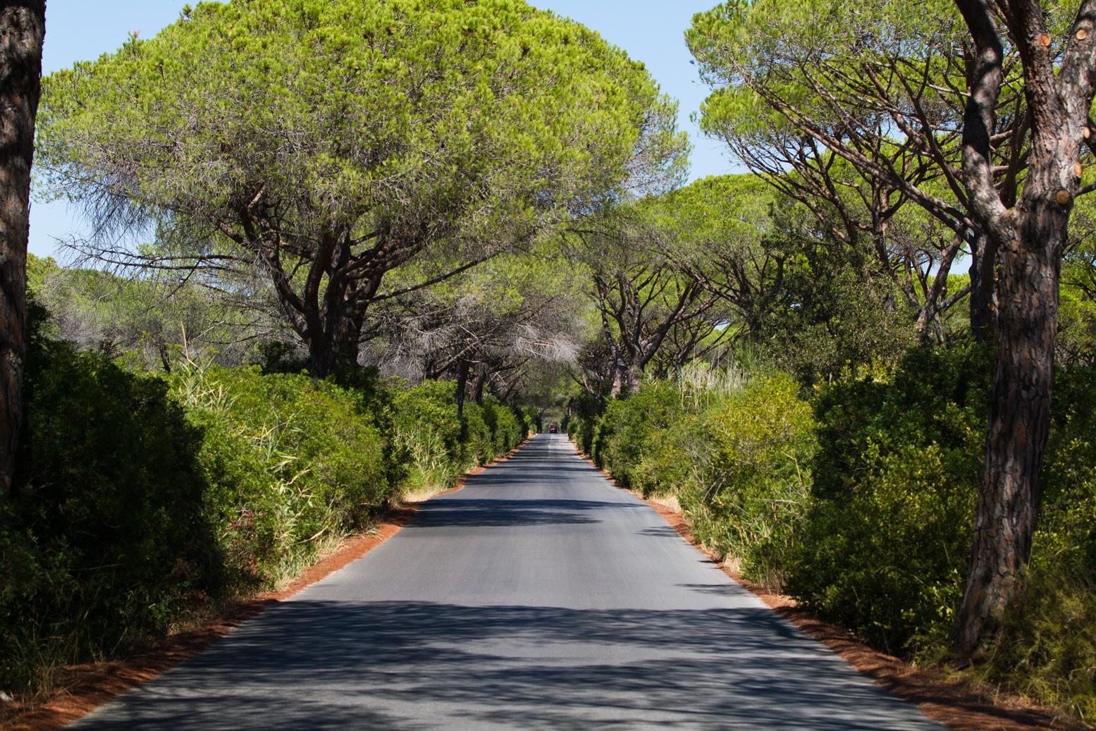 Guida turistica del Parco dell'Uccellina