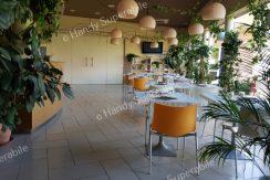 residence-san-rossore-pisa (1)