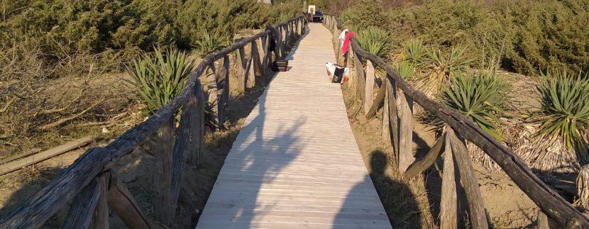 accessibilita spiaggie pisa