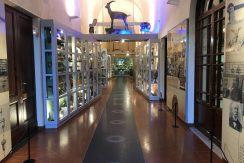 FS_Museo Fondazione Scienza e Tecnica_interno